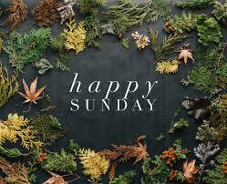 buona domenica immagini