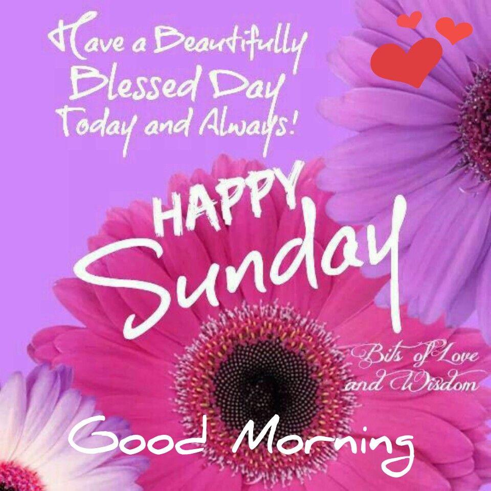 buona domenica in inglese