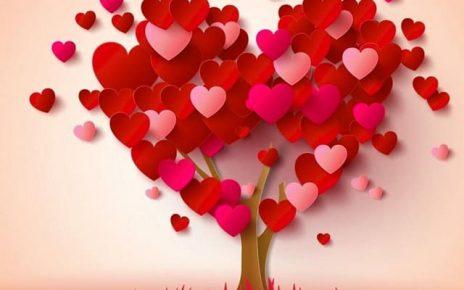 amore immagini