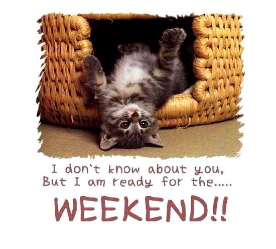 buon weekend immagini spiritose