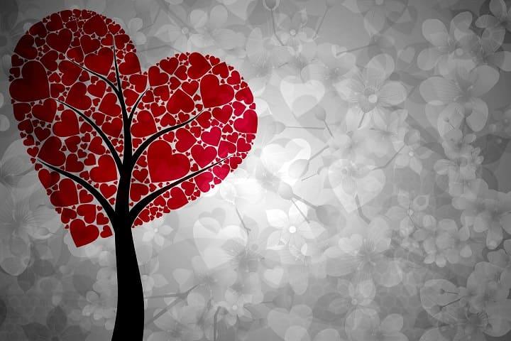 cuore immagini
