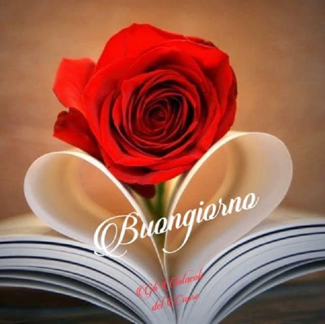 foto romantiche