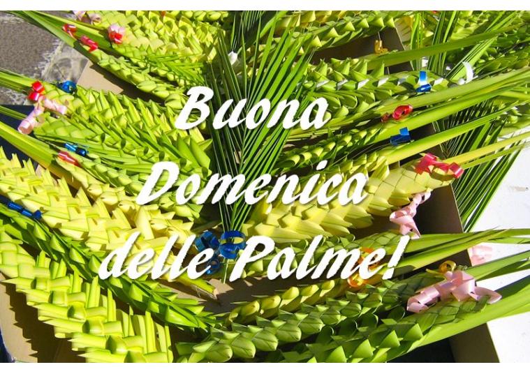 immagini di buona domenica delle palme