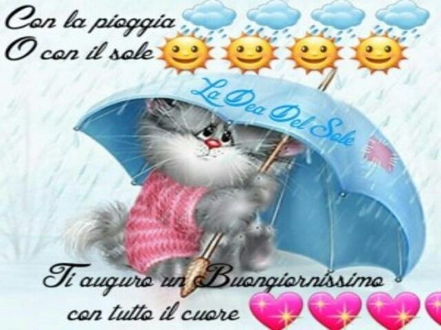 Buongiorno Piove 6