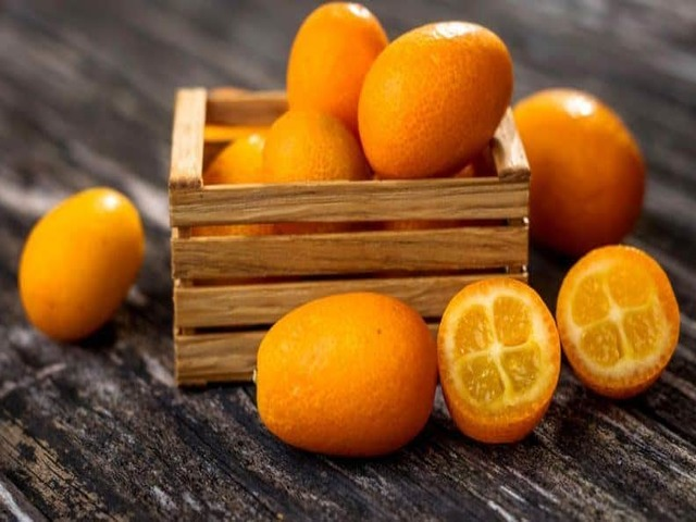 mandarini proprietà