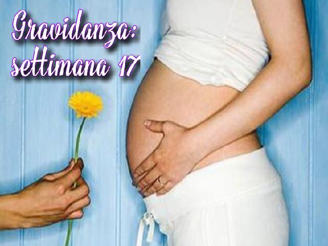 17 settimane gravidanza