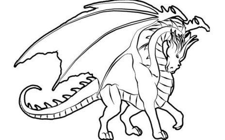 immagini di draghi