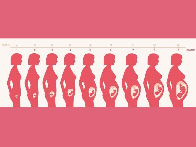 pancia gravidanza