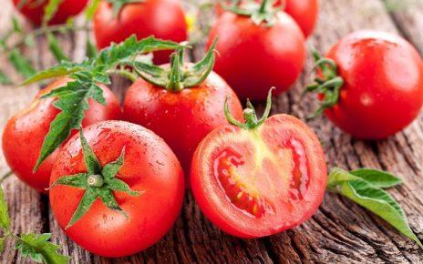 pomodori in gravidanza
