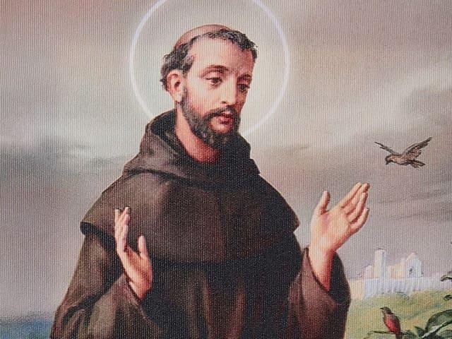 San Francesco immagini