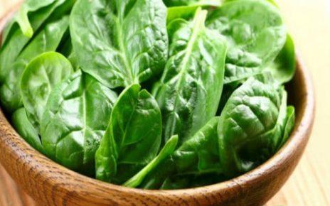 spinaci neonato foto
