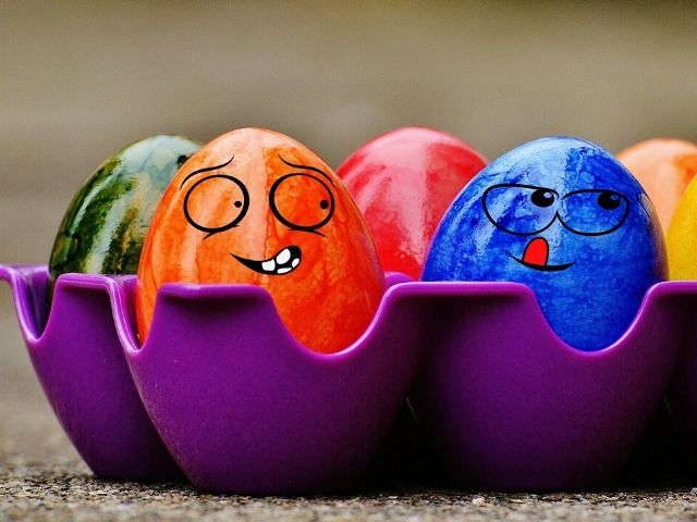 mangiare uova in gravidanza