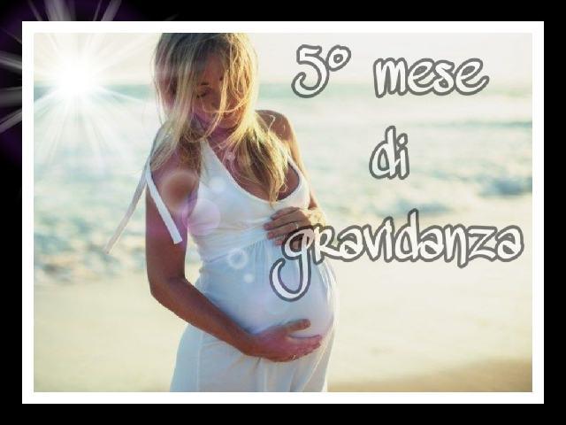 quinto mese di gravidanza