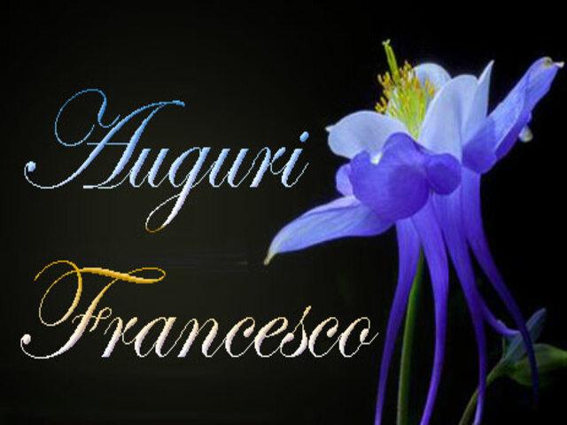san francesco calendario