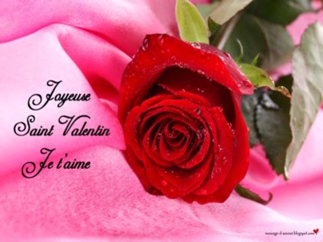 san valentino in francese4
