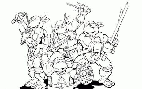 tartarughe ninja piccole