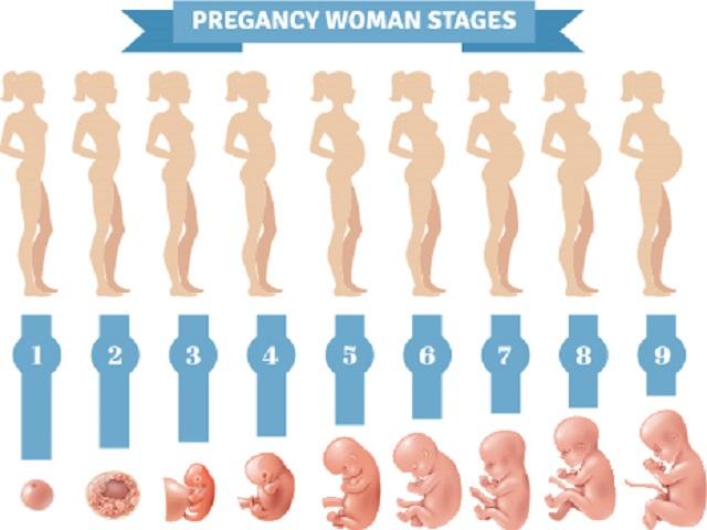 34esima settimana gravidanza