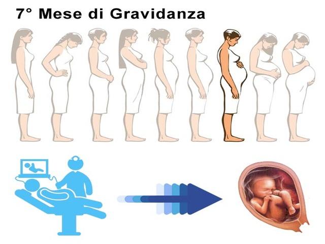 7 mese doi gravidanza foto