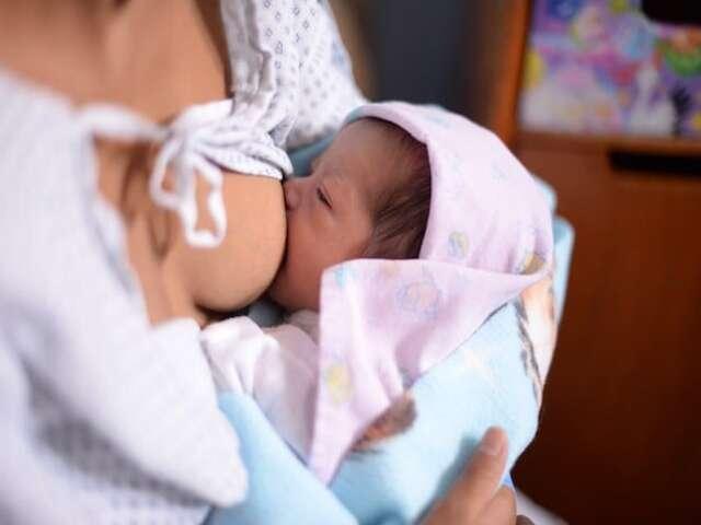 allattamento cannella foto