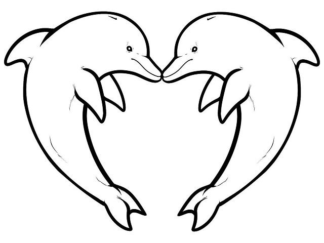 disegni delfini colorare