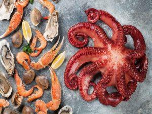 frutti di mare in gravidanza