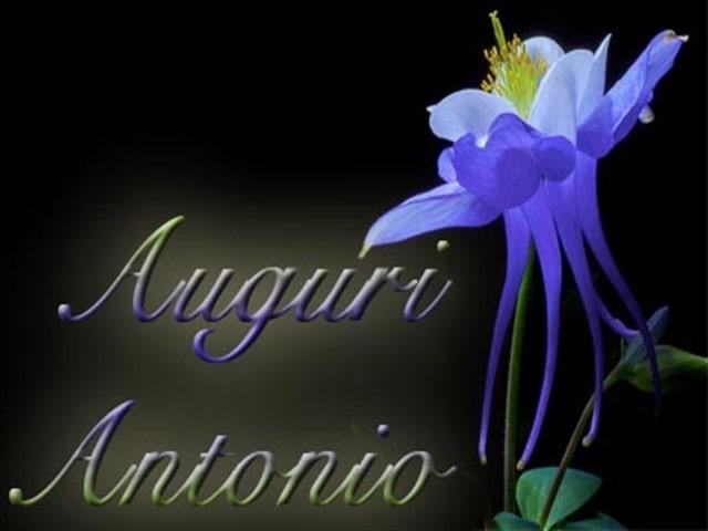 Auguri Antonio Frasi