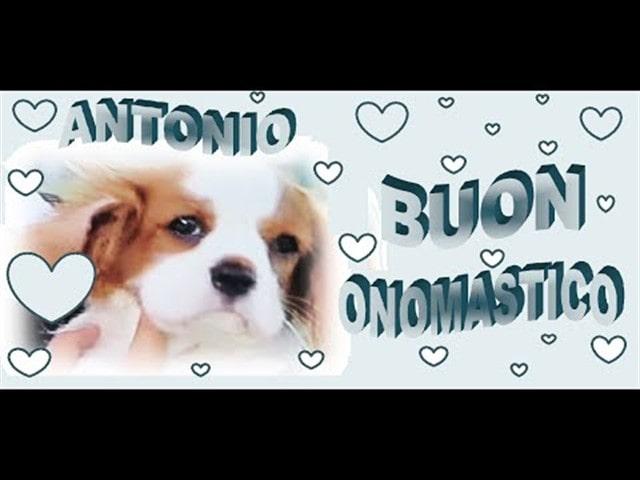 Onomastico Antonio