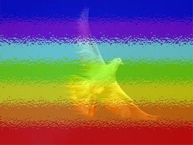 colori simbolo pace