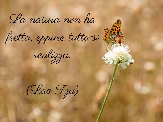 poesie natura