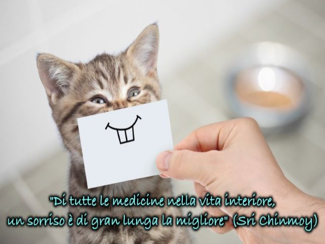 sorridi sempre