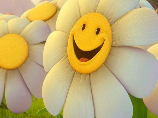 sorriso frasi