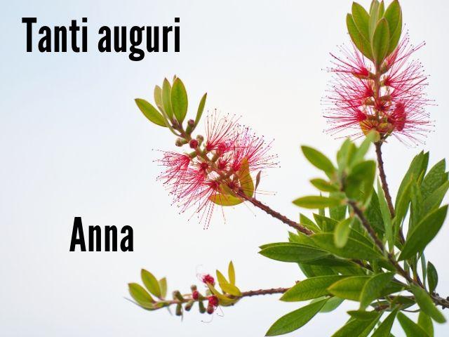Frasi divertenti per il compleanno di Anna, Auguri divertenti Anna