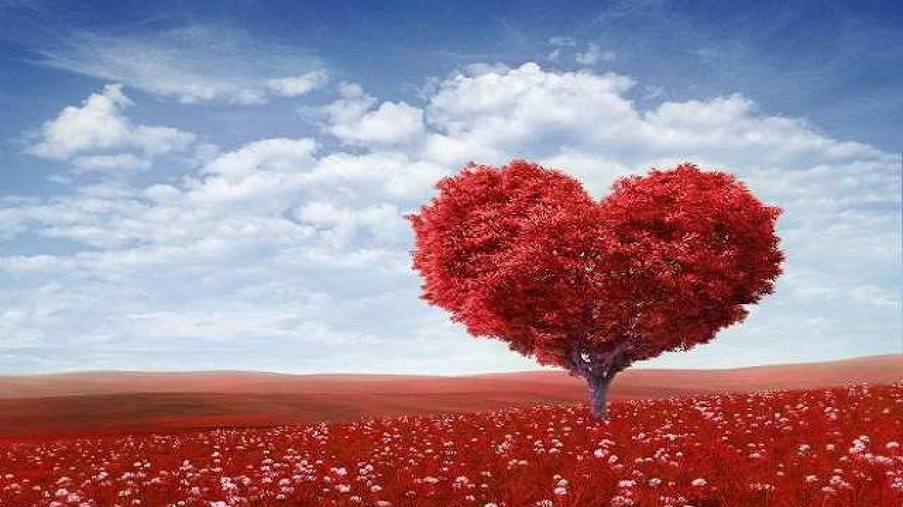 Frasi Sullamore Uguale Per Tutti.Frasi Sull Amore Eterno 151 Pensieri E Immagini Da Dedicare A Tutto Donna