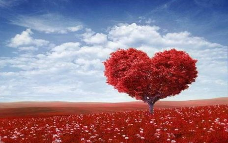 foto frasi sull'amore eterno