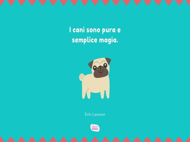 frase sui cani