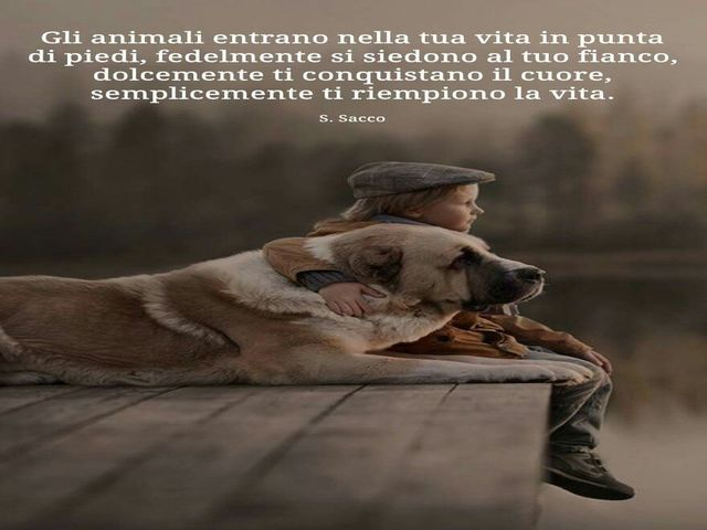 frasi sui cani amore