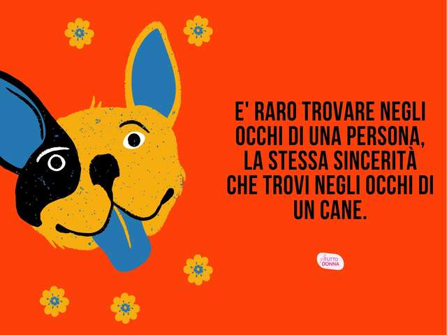 frasi sui cani e padroni