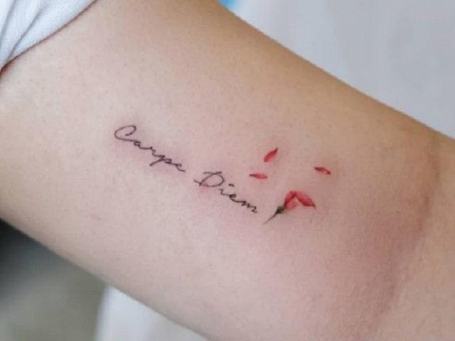 frasi tatuaggi in latino