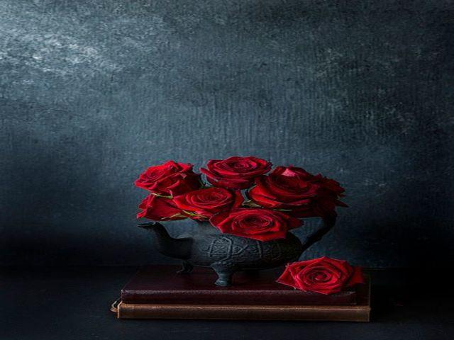 immagini di rose rosse