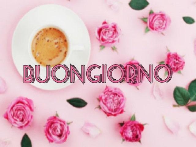 aforismi caffè
