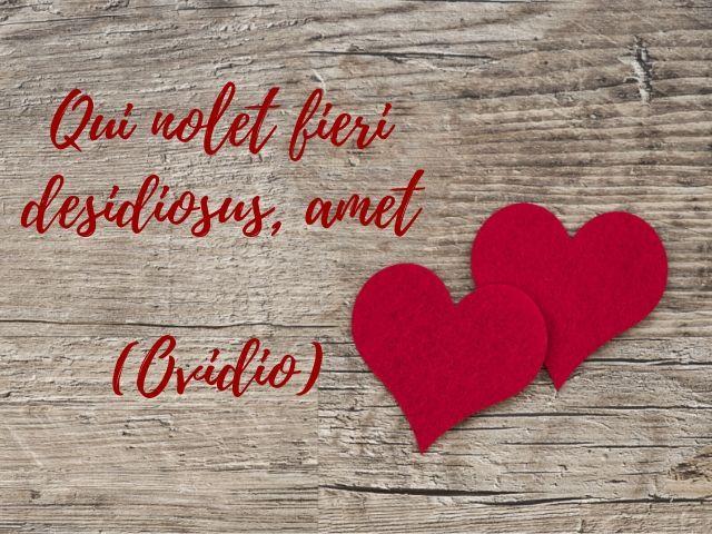 aforismi in latino sull amore