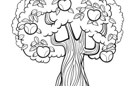 albero autunnale colorare