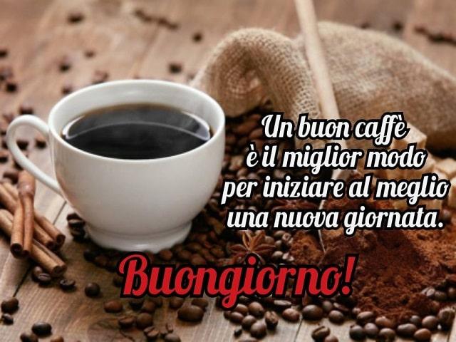 caffè aforismi
