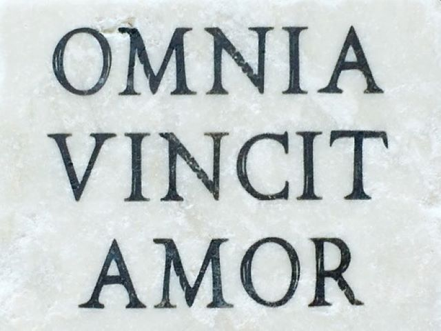frasi d amore in latino