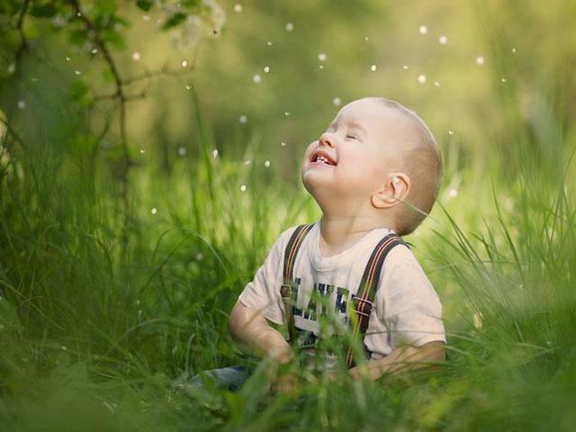 frasi di allegria sulla vita