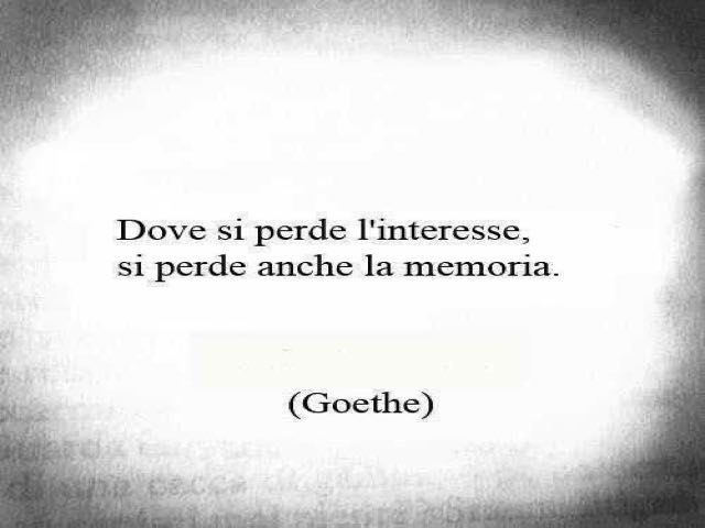 frasi sull indifferenza d amore