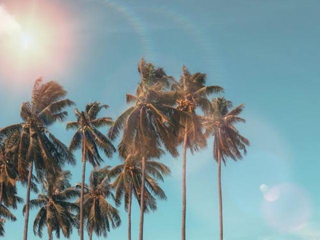 immagini d estate