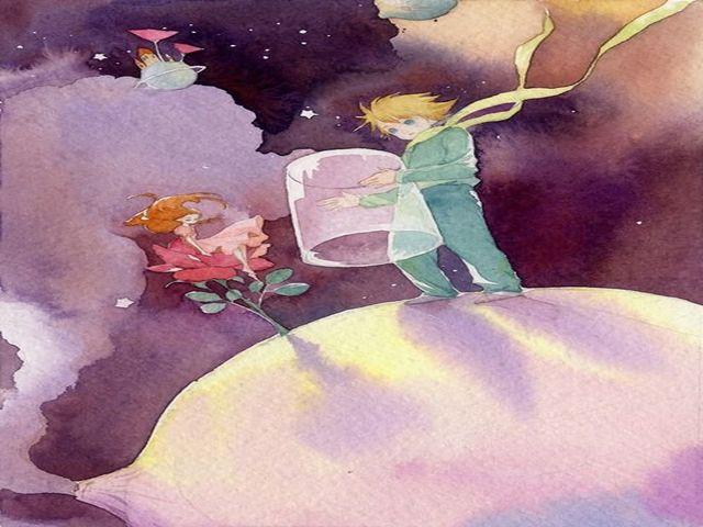piccolo principe e la rosa