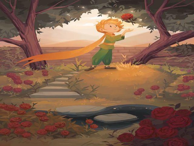 piccolo principe rosa frasi