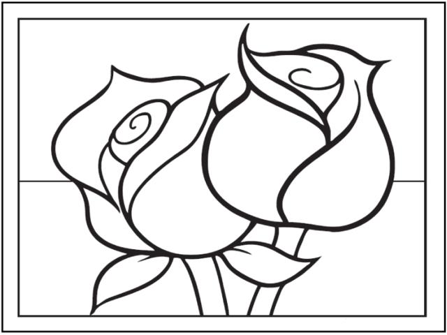 rose disegno